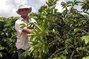 Brazilian Coffee Producer Paulo Oliari in Espirito Santo