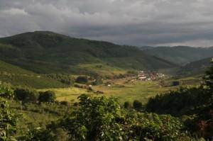 Coffee Fazenda Recreiro in Pocos de Caldas in Brazil