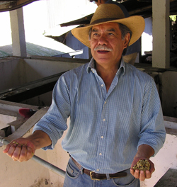 Don Arturo Aguirre At El Injerto in Guatemala Photo Courtesy Anacafe