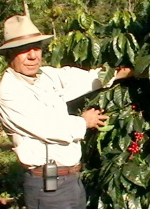 Don Arturo of El Injerto in Huehuetenango in Northern Guatemala