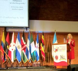 Maja Wallengren Speaking In Guatemala