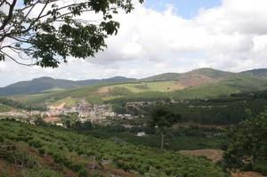 New Coffee in Marilandia in Espirito Santo in Brazil