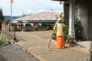 Woman Coffee Grower in Aceh Indonesia