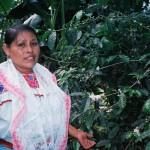 "Blog del Café: Anuncia SAGARPA muestra ""Consume café de México"""
