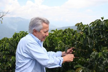 The Onset Of Colombia's Coffee Crisis Started In 2008