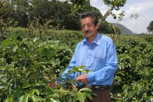 Finca Bellavista Coffee Farm in Guatemala near Coban