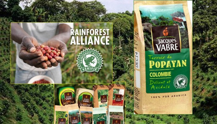 "Coffee of the Day: Colombia Popayan ""Rainforest Alliance"" By France's Jaques Vabre"