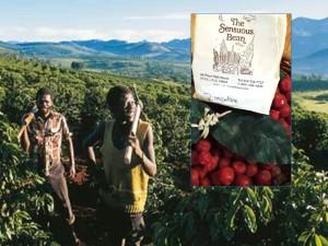 ZimbabweCoffeeBlog