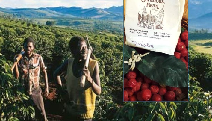 """Coffee of The Day: Estate Blend AA """"Super-Coffee"""" From Tiny Zimbabwe"""