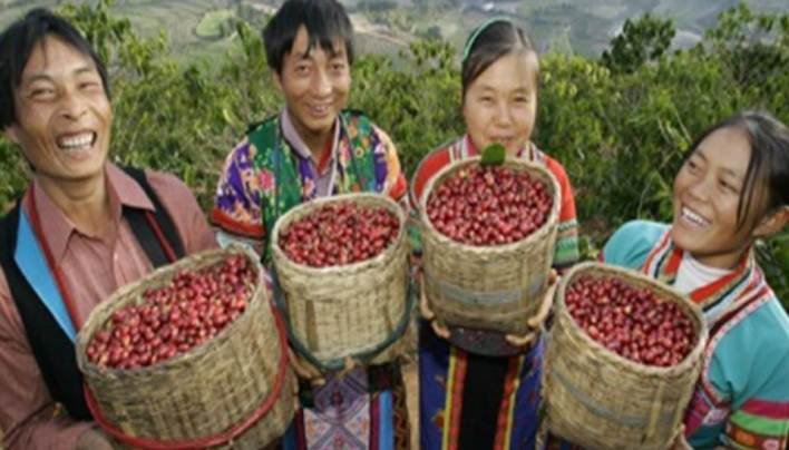 ORIGIN FOCUS: CHINA  — The World's Coffee Giant Is Waking Up!