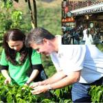 New Coffee Plantings in China Led by Starbucks in Puer Region