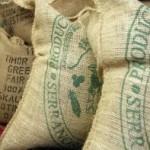 ICO Says Coffee Prices Continue Decline Despite Production Deficit Predictions