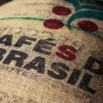 Brazil 2013 Cup of Excellence Top Coffee Attracts Double The Price of Last Year