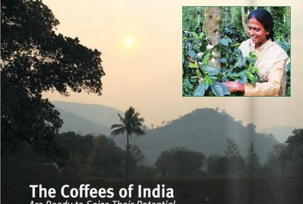 SPECIAL REPORT: The Coffees of India Getting Ready To Seize Its Potential