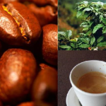 SPECIAL REPORT: Attention Coffee Lovers, A Coffee Addict's Guide to The Universe