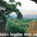 SPECIAL REPORT: Ethiopia's Forgotten Harar Region Returns To Specialty Coffee Market
