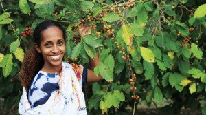 Oritgcr-mar16-Ethiopia-lge