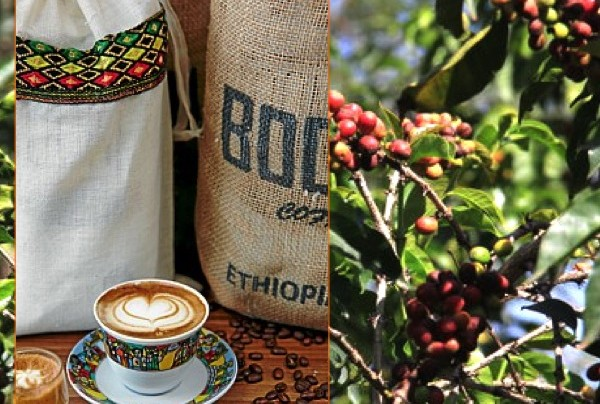 "Coffee of The Day: Boon's ""Full & Wild"" Stunning Ethiopia Blend of Harar, Sidamo and Kaffa Beans"