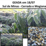 BREAKING: New Frost Attack Hits Brazil's Southern Minas Coffee Belt, Cerrado, Mogiana, Sao Paulo, Parana Mon – More Frost Seen Tue