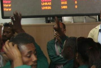 An exchange for the better: Coffee on the Ethiopia Commodities Exchange (ECX)